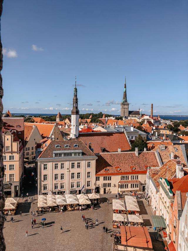 вид на центр города с ратушной башни